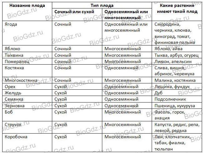Таблица по биологии 6 класс